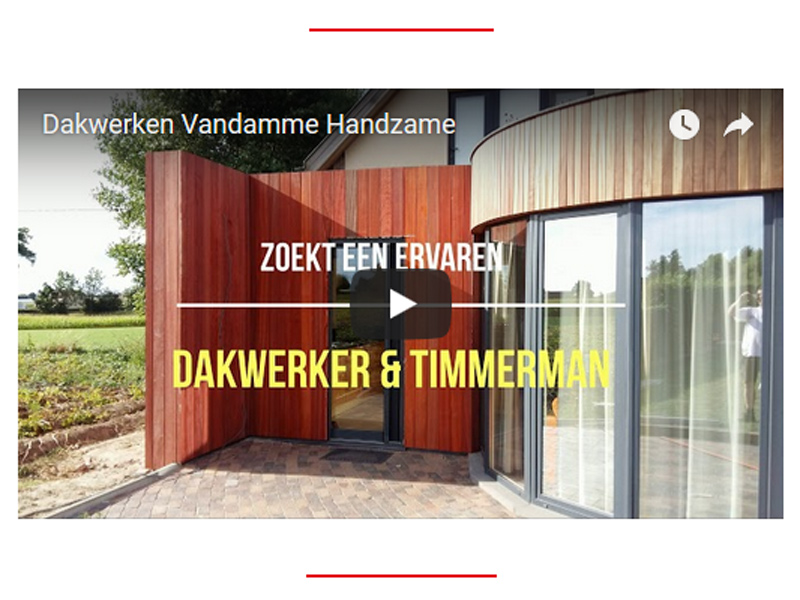 Video-advertentie