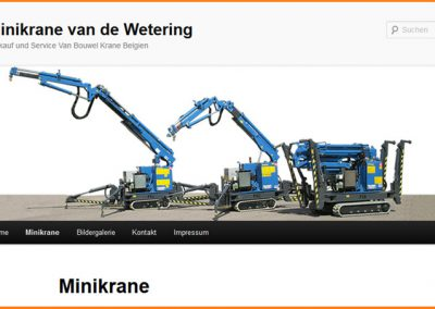 Webdesign-MinikraneKaufen